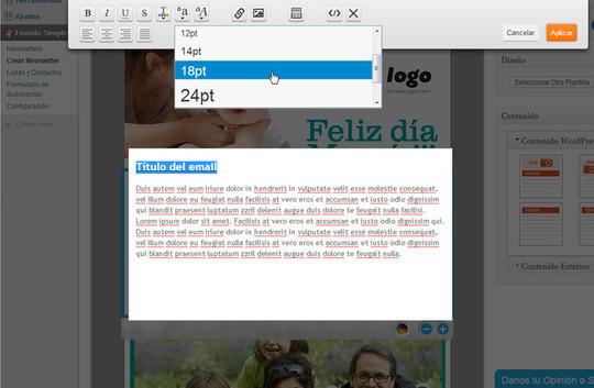 40 Free WordPress Newsletter Plugins 25