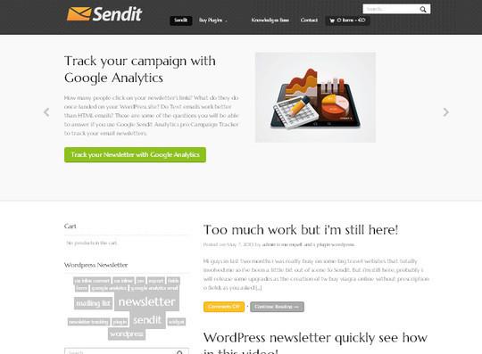 40 Free WordPress Newsletter Plugins 37