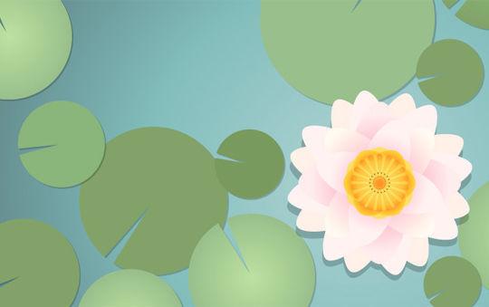 45 New Adobe Illustrator Tutorials 11