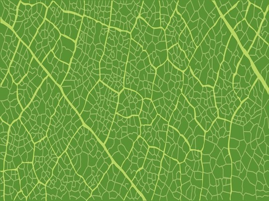 45+ High-Quality Free Vector Patterns 39