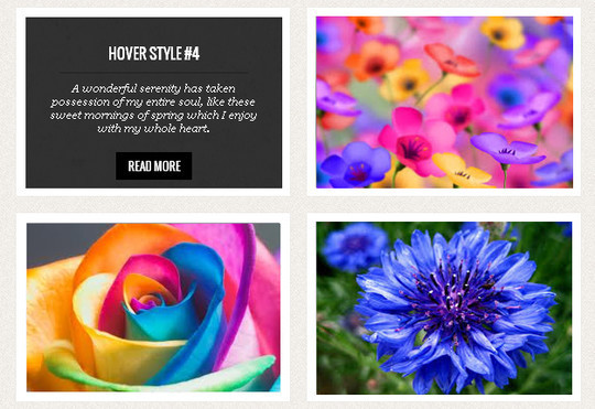 A Wonderful Collection Of Free jQuery & CSS3 Image Hover Effects 9