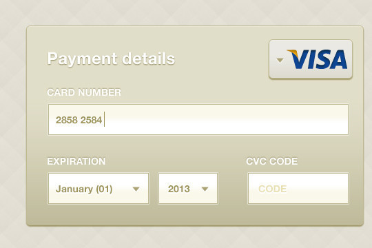13 Payment Form Photoshop Files For Free Download 7