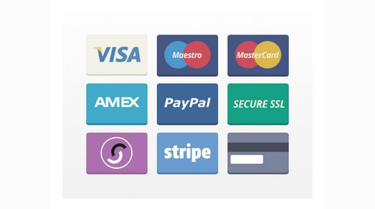 13 Payment Form Photoshop Files For Free Download 11