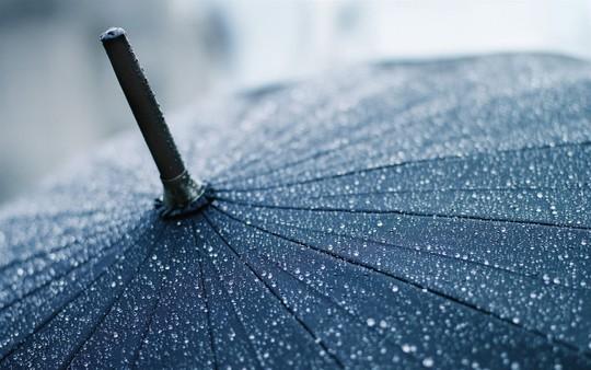 40 Raindrops Wallpapers For Your Desktop 10