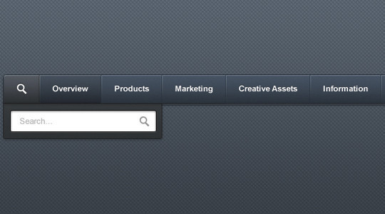 36 Useful Search Box Designs In Photoshop Format 21