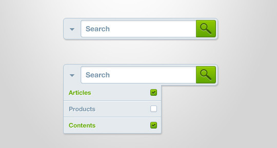 36 Useful Search Box Designs In Photoshop Format 5