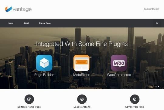 10 WordPress FREE Themes To Start Your Own eStore 6