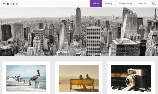 40 Fresh And Free WordPress Themes 24