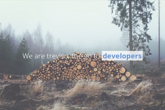 38 Useful Responsive Bootstrap Templates, Skins And Resources 26