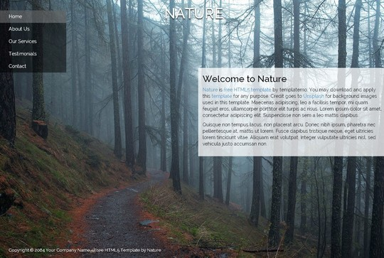 40 Fresh Yet Free HTML5 And CSS3 Templates 8
