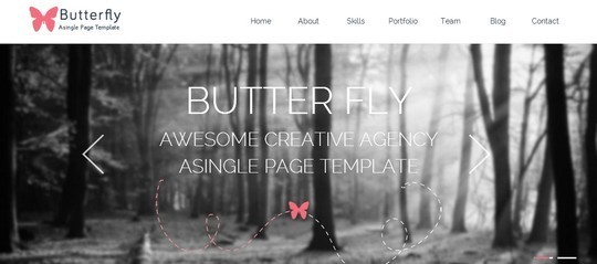 40 Fresh Yet Free HTML5 And CSS3 Templates 39