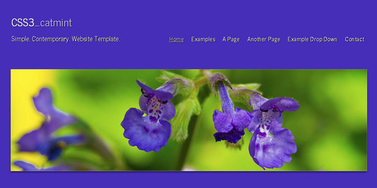 40 Fresh Yet Free HTML5 And CSS3 Templates 11