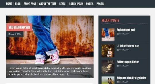40 Killer Fresh WordPress Themes For Free Download 29