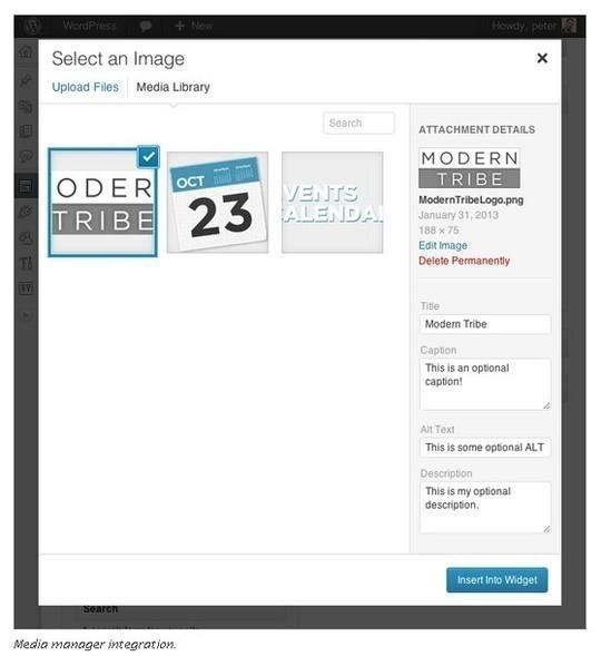 12 Incredibly Useful WordPress Widgets 6