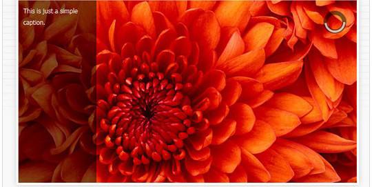 12 Wordpress Plugins To Create Image Effects 14