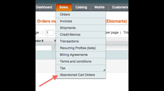10 Essential Magento Extensions You May Need 4