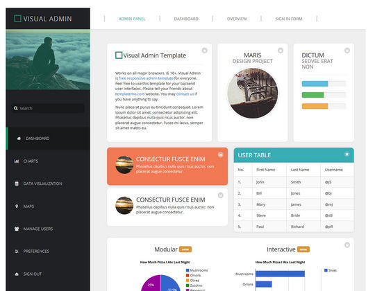 12 Free And Fresh HTML5 Web Templates 5