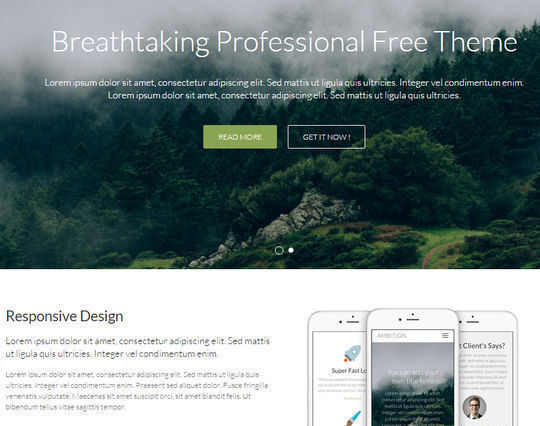 12 Free Small Business Themes For Wordpress 3