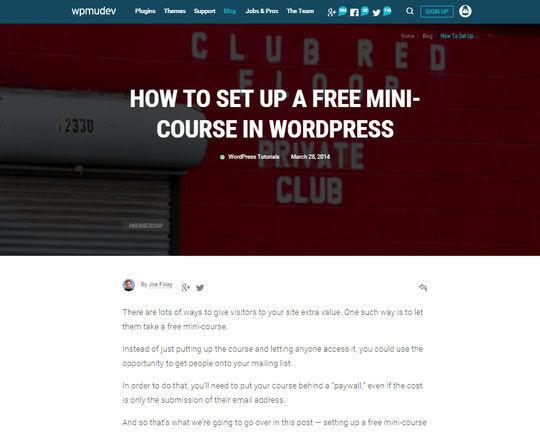 10 Tutorials For WordPress Merchants 9