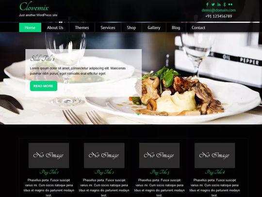 12 Free Food & Restaurant WordPress Themes 12
