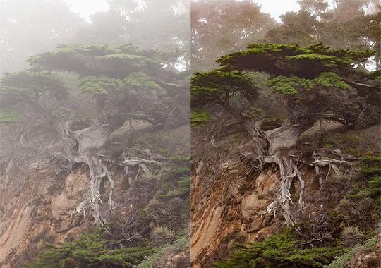 10 Adobe Lightroom Tutorials For Photographers 4