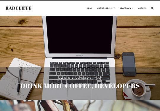 12 Free Small Business WordPress Themes 5