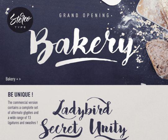12 Beautiful Cursive & Handwritten Fonts To Download 7