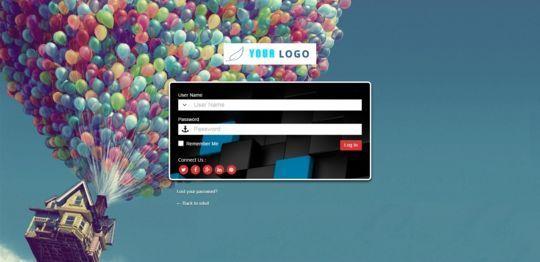 5 WordPress Custom Login Plugins 3