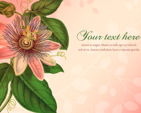 10 Fresh & Free Vector (AI, EPS Files) Background 8