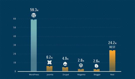 The Insightful Collection Of Infographics With Revealing Facts & Statistics About WordPress
