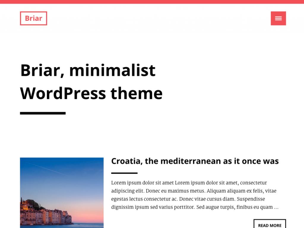 11 Super Simple Wordpress Themes 11