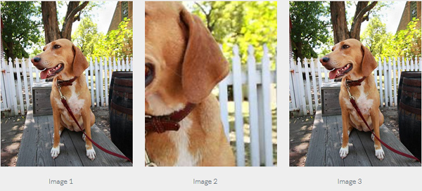 11 Amazing jQuery Plugins To Handle Images On Your Websites 4