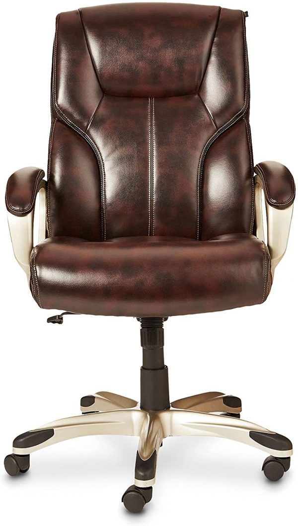 Executive Office Desk Chair with Armrests 2
